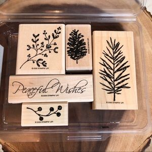 🆕Stampin Up Peaceful Wishes Stamp Set